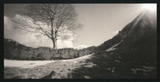 Sycamore Gap - Hadrian's Wall