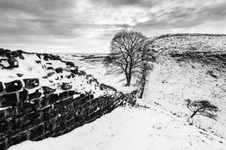 sycamore_gap-0169edit